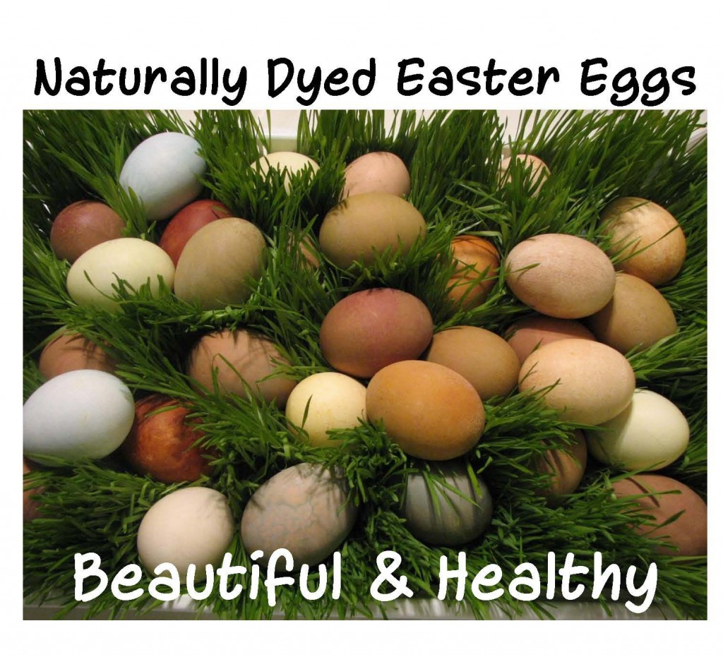 Naturally Dyed Easter Eggs picture
