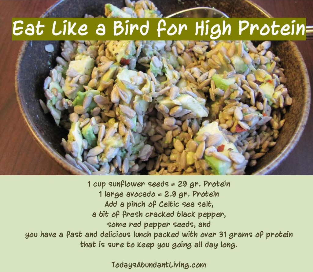 Eat Like a Bird for High Protein_Page_1